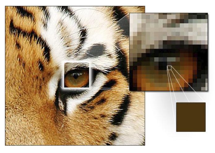 Ricampionamento foto - interpolazione pixel