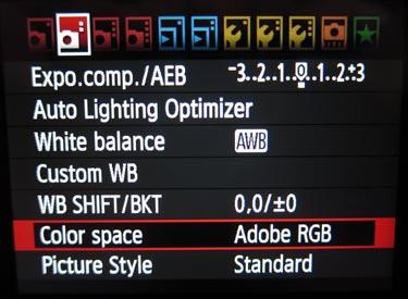 Colore Stampa: Come ottenere il giusto colore