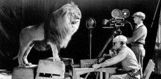 Dei cameramen riprendono il ruggito del leone per la sigla della Mgm
