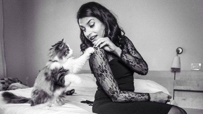 Marianna-Zampieri-Passions-fotografia-gatti