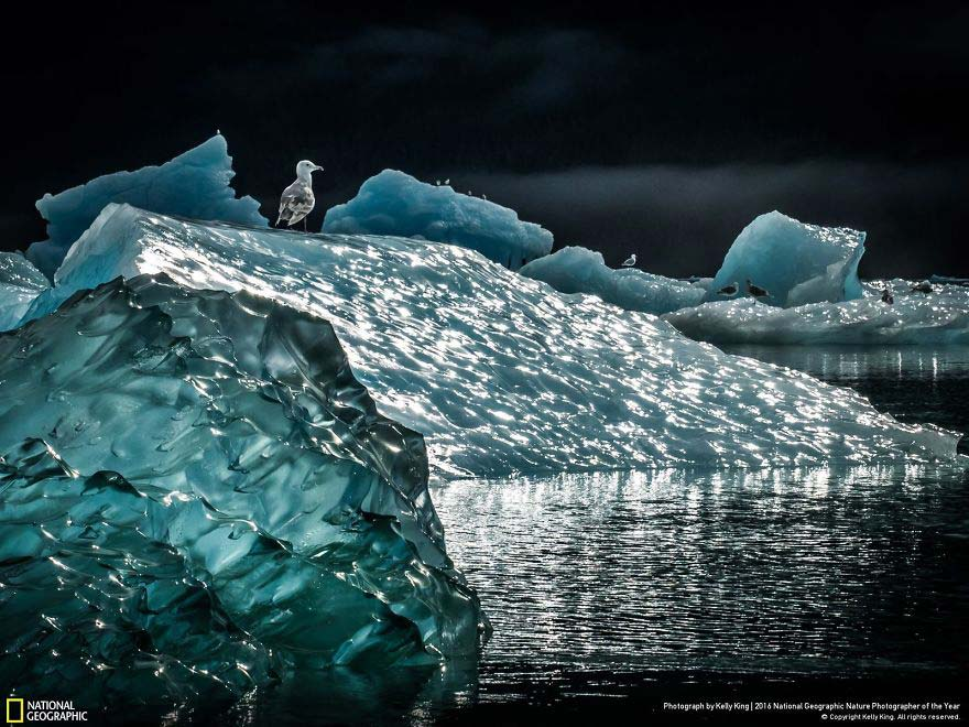 national-geographic7