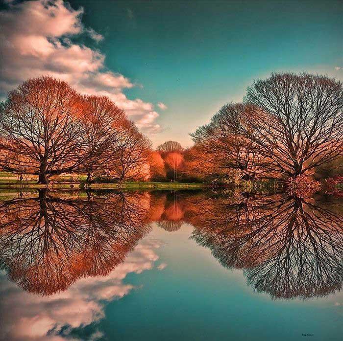 Hyde Park, Gabriele Corno