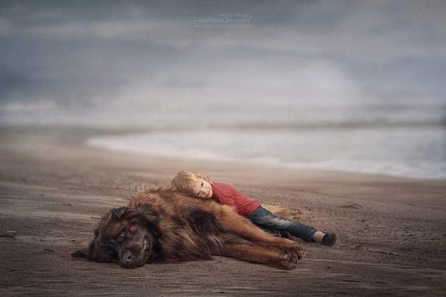 Cani grandi e bambini piccoli, il progetto di Andy Seliverstoff