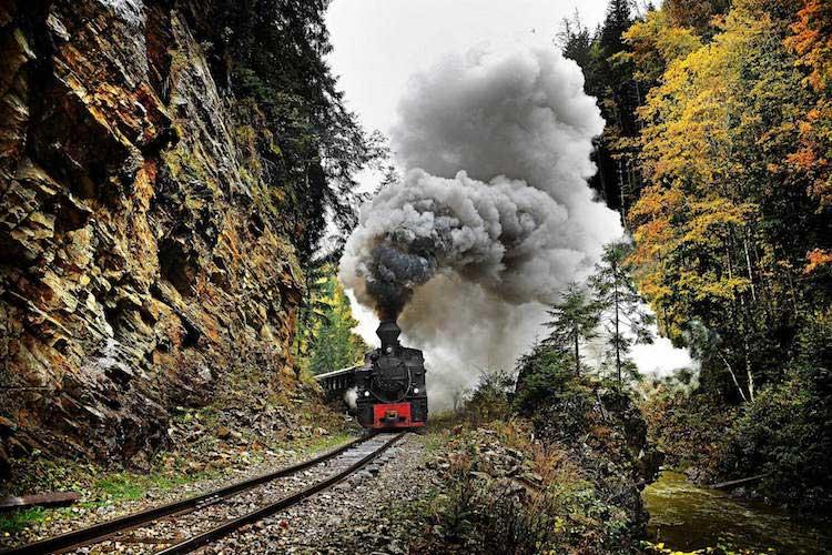 Fotografia Treni in viaggio di Robin e Talieson Coombes