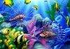 Le migliori fotocamere subacquee