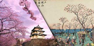 Hanami cosa significa, la storia della festa giapponese