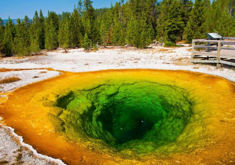 Parco Nazionale di Yellowstone, Wyoming (Yun Gao)