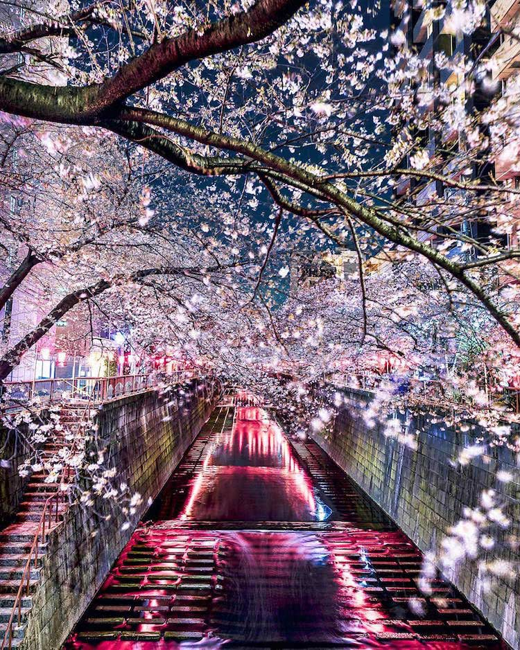 Takashi Komatsubara, fotografo Giapponese