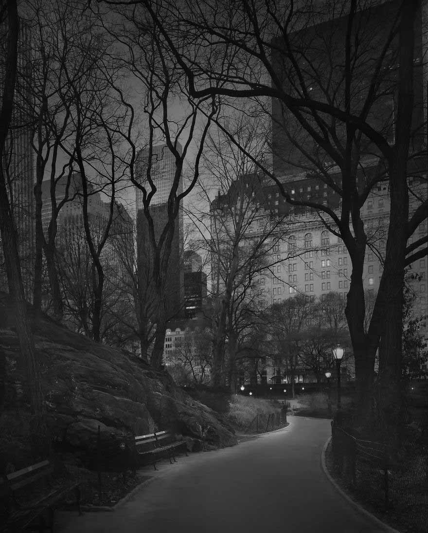 Fotografie di Michael Massaia a Central Park (4)
