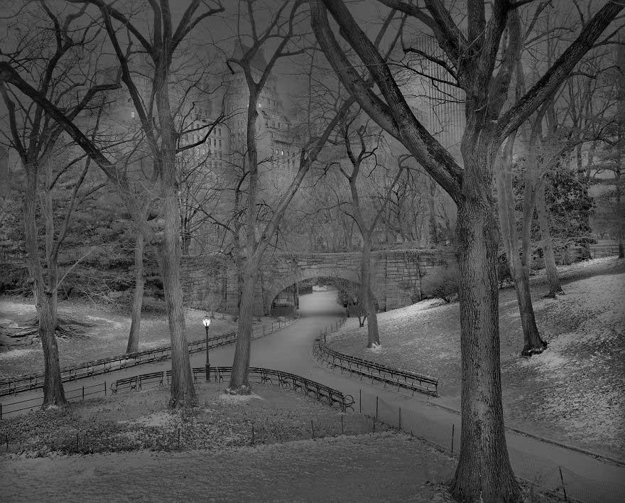 La notte a Central Park di Michael Massaia