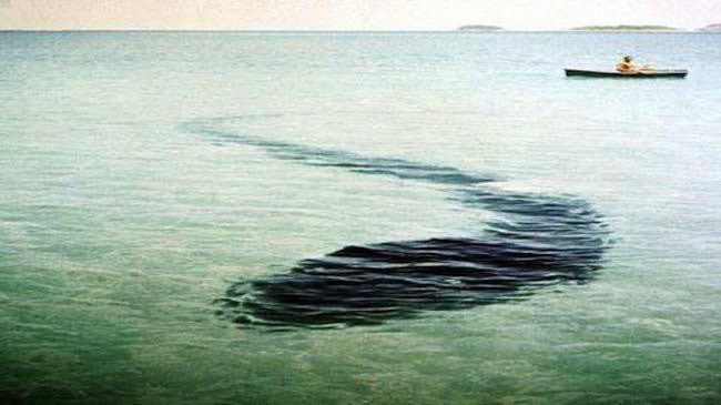 Un mostro al largo della costa di Hook Island