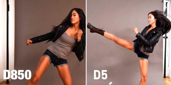 Nikon D850 vs Nikon D5 Autofocus