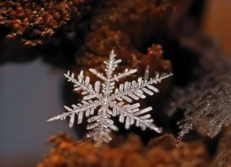 Foto Fiocchi di neve di Andrew Osokin
