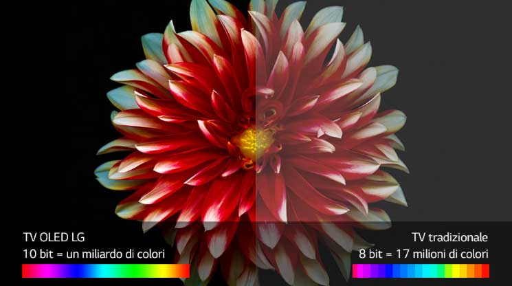 Lg Oled55b7v Qualita del colore