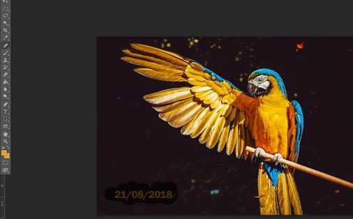 Come togliere la data con Photoshop