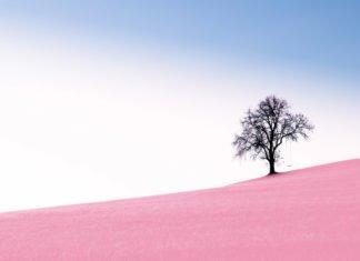 Guida alla fotografia minimalista