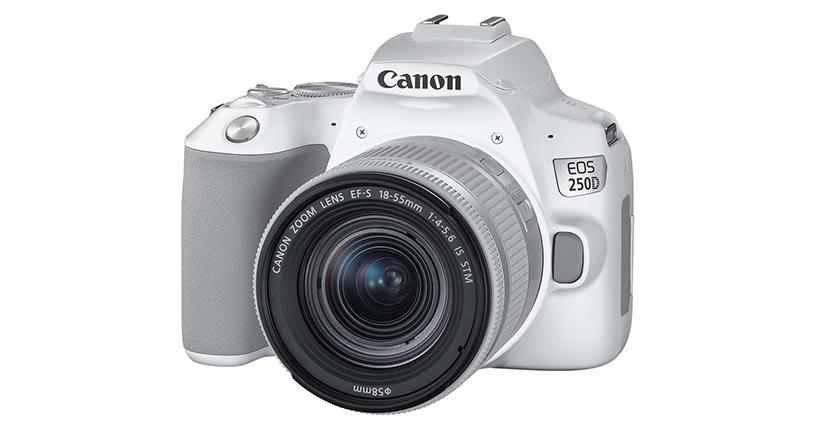 Recensione della Canon 250D