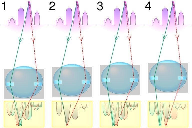 Come funziona l'autofocus della fotocamera