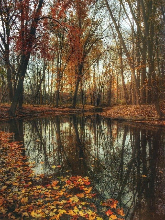 Foto d'autunno