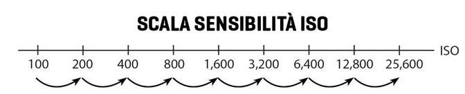La scala della sensibilità iso
