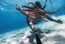 Le migliori fotocamere subacquee del 2021