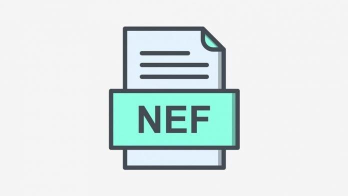 Guida al file NEF