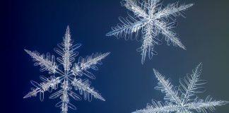 Foto di fiocchi di neve di Nathan Myhrvold